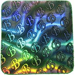 1000 Hologramme B Standard