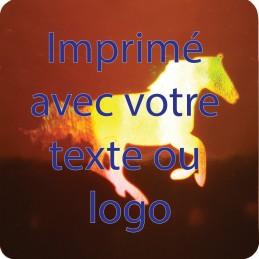 1000 Hologramme Standard Cheval Avec Votre Text Ou Logo Bleu