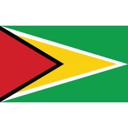 Drapeau Autocollant Guyana...