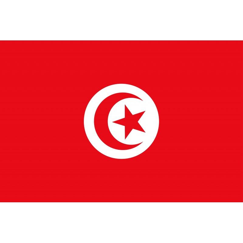 Drapeau Autocollant Tunisie 10 cm