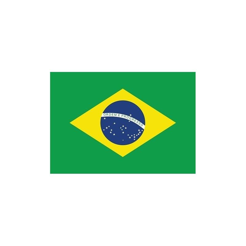 Drapeau Autocollant Brésil 10 cm