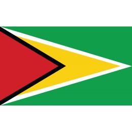 Drapeau Autocollant Guyana 10 cm