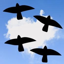 Mix des 4 Oiseaux...